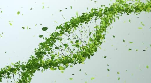 Green tree DNA Illustration