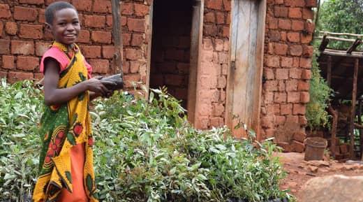 Usambara Project Tanzania